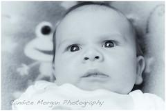 'A look of horror...' (candicemorganphotography) Tags: people baby mono babyportrait sonyalpha850 candicemorgan candicemorganphotography sonycarlzeissvariosonnar282470zatssm