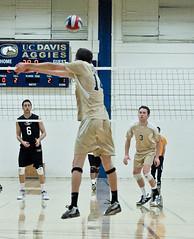 Josh Frost #14 and Bryce Williams #3- UC Davis Men's Varsity I Volleyball (Don Eng) Tags: mens volleyball ucdavis sacstate 2213 varsityi