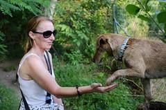 Best Mate (Zandgaby) Tags: mate best bff handshake five givemefive dog woman sunglasses