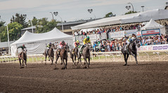 Canadian Derby - Edmonton 2016 (IQRemix) Tags: horse thoroughbred racing edmonton alberta northlands northlands park yeg horseracing jockey derby race sport   caballo cheval canadianderby canada