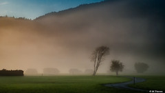 Misty Sunrise in the Alps (Codex IV) Tags: alpen alps architektur baum berge blau blue city cityscape felder fields fog golden himmel land landscape landschaft misty mountain nebel orange profan sky sonnenaufgang stadt stadtansicht sunrise tree wettersteingebirge