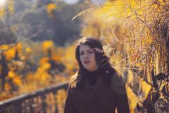 Outono (27brambilla) Tags: tamires namorada girlfriend girl friend frio outono canon 50mm folhas folhassecas leafes leaf poosdecaldas minasgerais mg autumn yellow amarelo goldenhour brambilla27 bokeh gata gatinha sol sun aoarlivre travel gente sunset life brazil