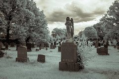 Bains' Angel (Adventures in Infrared) (Torsten Reimer) Tags: brooklyn unitedstatesofamerica friedhof infrared northamerica nyc newyorkcity olympusepl5 usa queens graveyard infrarot cemetery cemeteryoftheevergreens newyork unitedstates us