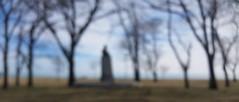 The Statue (michael.veltman) Tags: blur chicago illinois lake shore drive michigan trees statue winter