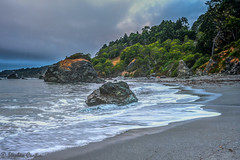 Washing Away (stephencurtin) Tags: sea stacks ocean pacific trees sand beach waves am color photograph