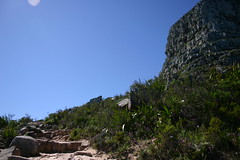 IMG_9864 (Couchabenteurer) Tags: lionshead capetown southafrica sdafrika kapstadt