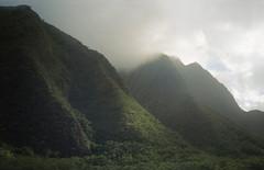 LOMO LC-A+ (Meagan Rochelle Ranes) Tags: lomo lca lomography film 35mm lofi lowfidelity c41 iao valley maui hawaii grain analog iaovalley minimal minimalist atmosphere fog mist gloom ethereal dream dreamscape dreamy