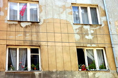 The circle of life (bulgit) Tags: windows flowers old woman for sale abandoned struggling geometrical sofia bulgaria
