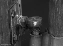 Details (norm.edwards) Tags: blackandwhite black rust texture gates lock walk thrapston lakes autumn bird tactile old