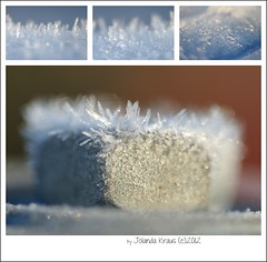 Winter december 2012 (Digi-Jo) Tags: winter macro nikon bokeh sneeuw 60mm ijs stomped nikon60mm macrofotografie d700 nikond700