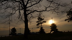 P1220044 (aprm718_3) Tags: nyc trees sunset sky brooklyn clouds campus landscape kingsborough amateurphotography anthonymcnallyphotography aprm718