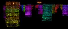 CV041 Water Towers (listentoreason) Tags: usa art museum night america canon geotagged artist unitedstates pennsylvania geocoded scenic favorites places longwoodgardens watertowers ef28135mmf3556isusm score30 brucemunro