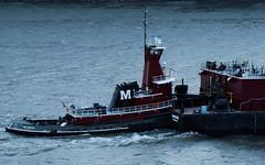 At The Wheel (thetrick113) Tags: boat tugboat hudsonriver barge hudsonvalley coldspringnewyork maryturecamo vessl morantowingcorporation hudsonrivertugboat tennesseebarge patroliumbarge tugboatmaryturecamo mattonshipyardcompany maryturecamomorantowing