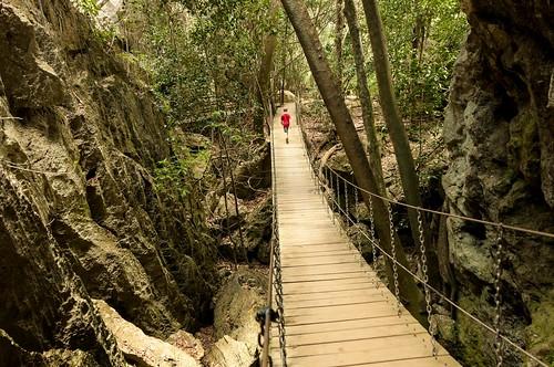 Un pont à la Indie
