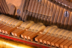 Day 335 - Striking a chord (Ben936) Tags: music playing piano strings musicalinstrument hammers pianostrings dampening pianohammers
