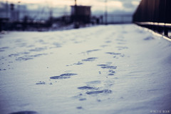 Step in the Snow (KineticBear) Tags: christmas morning winter lighthouse lake snow ice wisconsin sunrise river michigan tracks greenbay tradition footprint menominee jacobmiller kineticbear