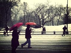 Central Park (erin m) Tags: newyorkcity snow centralpark mammoth gothamist umbrellas uploaded:by=flickrmobile flickriosapp:filter=mammoth