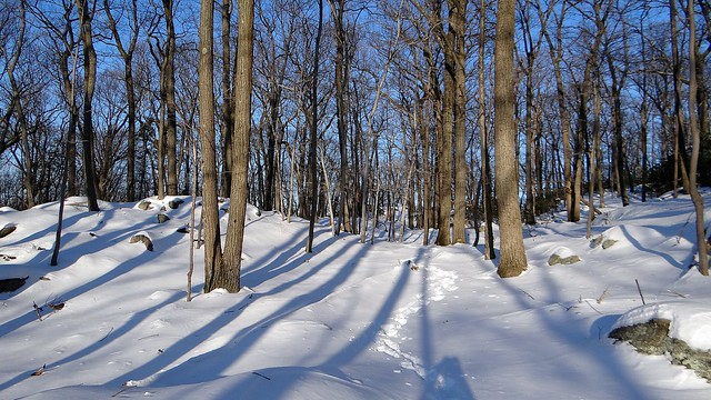 The Long Path, Harriman State Park, NY  Jan 3, 2013