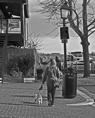 A Dog Walk In Old Town (Reg Photography4Lyfe) Tags: street people dog lamp alexandria walking photography 1 virginia nikon streetlamp streetphotography walker va nikkor oldtown j1 nikonj1 30110mm