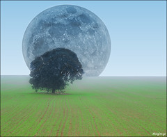 La Encina y la Luna / The Holm Oak and the Moon. 6-365. (Sigenza on/off.) Tags: paisajes naturaleza moon color colour green art nature fog azul composition landscapes interestin