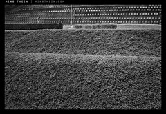 _8027073 copy (mingthein) Tags: blackandwhite bw film monochrome availablelight delta contax malaysia 100 kuala t3 kl ming ilford lumpur onn thein photohorologer mingtheincom