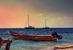 Yucatan Dusk (Artypixall) Tags: beach mexico boats yucatan pelican getty faa caribbeansea puertomorelos