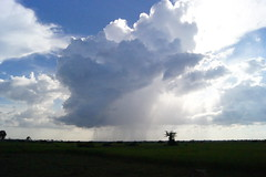 Storm cloud (Lemuellz) Tags: pictures trip morning travel school people children photography friend scenery cambodia day photographer classmate orphanage photograph fields