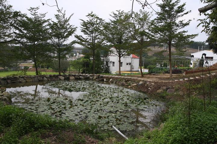 苗翔牧場(牛奶的故鄉)041