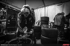 APR-Motorsport-Rolex-24-2013-144