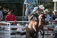 Tak_CPRA_2016-4796 (takahashi.blair) Tags: coachtak rodeo blairtakahashitakahashiblaircoachtakblairtakahashi pincher creek barrel racing bronc rope bareback steer bullriding