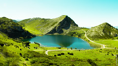 Lake Enol, Peaks of Europe, Covadonga Lakes, Asturias, Spain (I need feedback) (G.Roca) Tags: horizon landscape mirror asturias mountains roads lake reflexion summer spain cows flowersplants covadonga green picosdeeuropa grass blue peaksofeurope