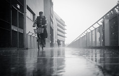Feel the Rain part II (marcin baran) Tags: rain rainy weather water heavy pouring man human element people bike bicycle person ride riding black blackwhite blackandwhite bw mono monochrome reflection wet gliwice poland polska marcinbaran fuji fujifilm x100 x100t street streetphotography streetphoto urban city candid candidphotography