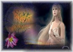 Meglio essere lasciata in pace (Poetyca) Tags: featured image sfumature poetiche poesia