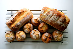 Batch (Simon Taylor Local Photographic) Tags: bread rolls loaf loaves baked produce product