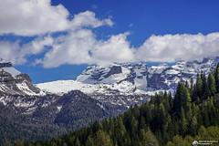 DSC03052crw (Abboretti Massimiliano-Mountain,Street and Nature ) Tags: abboretti alps alpi dolomiti dolomites sonya7r2 sony madonnadicampiglio valrendena brenta moon anseladams