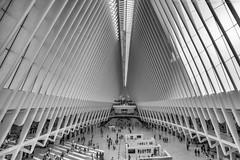 dove (noaxl.berlin) Tags: manhatten sony a7rii samyang rokinon walimex 14mm newyork ny architektur architecture skyscraper night brooklyn lights skyline bridge stars dove wtc worldtradecenter subway metro