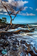 Ahihi-Kinau Natural Area Reserve (brandon.vincent) Tags: pacifc ocean maui hawaii ahihikinau natural area reserve south tree rocs rocks lee filter gnd long exposure water movement island