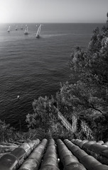 Regatta. f6.3; 1/160s; ISO 100; FL22mm.  Juan Manuel Saenz de Santa Mara, 2016 (Brenus) Tags: impresiones lensblr photographers tumblr black white photography landscape seascape mediterranean pinewoods roofs salou