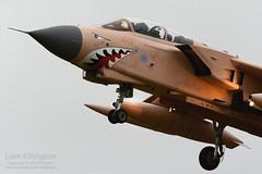 Panavia Tornado GR4 ZG750 180 Operation Granby Special Scheme RAF Marham (liam.killington) Tags: panavia tornado gr4 zg750 180 operationgranby special scheme rafmarham raf marham pinky military aircraft aviation fastjet nikon d7100 300mm f4 nikkor