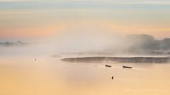 Matin pastel (Bertrand Thifaine) Tags: loire aube fleuve ancenis plate bateau brume couleurspastel eau d750