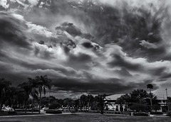 late afternoon routine (littletinperson) Tags: blackandwhite bw bn monochrome florida skies clouds university lateafternoonroutine littletinperson melbourne iphone