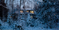A glimpse of the restaurant between the snowy trees (Lars Dahlin) Tags: christmas december sweden christmasfair jamtli stersund julmarknad