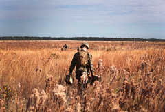 Fields of Gold (United States Marine Corps Official Page) Tags: camp field usmc training demo gold us nc marine military group demolition 2nd fields ammo bombs explode ammunition explosives logistics supply ied c4 camplejeune ordnance battalion detonate lejeune