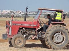 002 (Images from Gaza) Tags: tractor farming solidarity shooting gaza ploughing accompaniment bufferzone ceasefire israelimilitary december2012 khuzaa wheatplanting