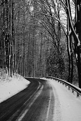 The road to winter (dididumm) Tags: road street wood schnee trees winter bw snow tree forest blackwhite woods strasse sw wald bume baum