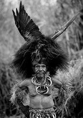 Chimbu Tribe Man During Mount Hagen Sing Sing Cultural Show, Mt Hagen, Western Highlands, Papua New Guinea (Eric Lafforgue) Tags: travel portrait people blackandwhite tourism outdoors highlands day decoration performance makeup tribal jewellery ornate tribe papuanewguinea performer oneperson headdress frontview traditionalculture singsing headwear headandshoulders headgear oceania traditionalclothing realpeople southpacificocean traveldestinations lookingatcamera pacificislander onemanonly 1people artscultureandentertainment indigenousculture papuan hagener traditionalceremony ceremonialmakeup humanbodypart wahgivalley a0008697