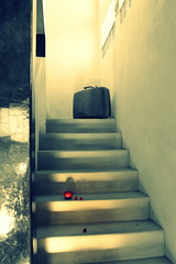 Vacation Noir (phoebird) Tags: red hot luz stairs noir tomatoes luggage santos todos 2012 phoebird utata:project=ip165