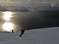 Skiing towards the arctic sea