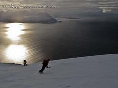 Skiing towards the arctic sea