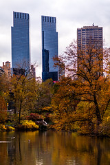 Central Park In Fall (Mabry Campbell) Tags: nyc newyorkcity november autumn trees usa ny newyork reflection building nature water colors leaves yellow buildings reflections photography us photo colorful cityscape unitedstates centralpark manhattan fallcolors unitedstatesofamerica 85mm autumncolors photograph fallen 100 f28 2012 newyorkcounty ef85mmf18usm nycphotowalk nycworkshop sec mabrycampbell november132012 201211138959